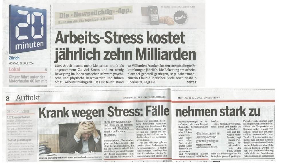 Kosten des Stresses