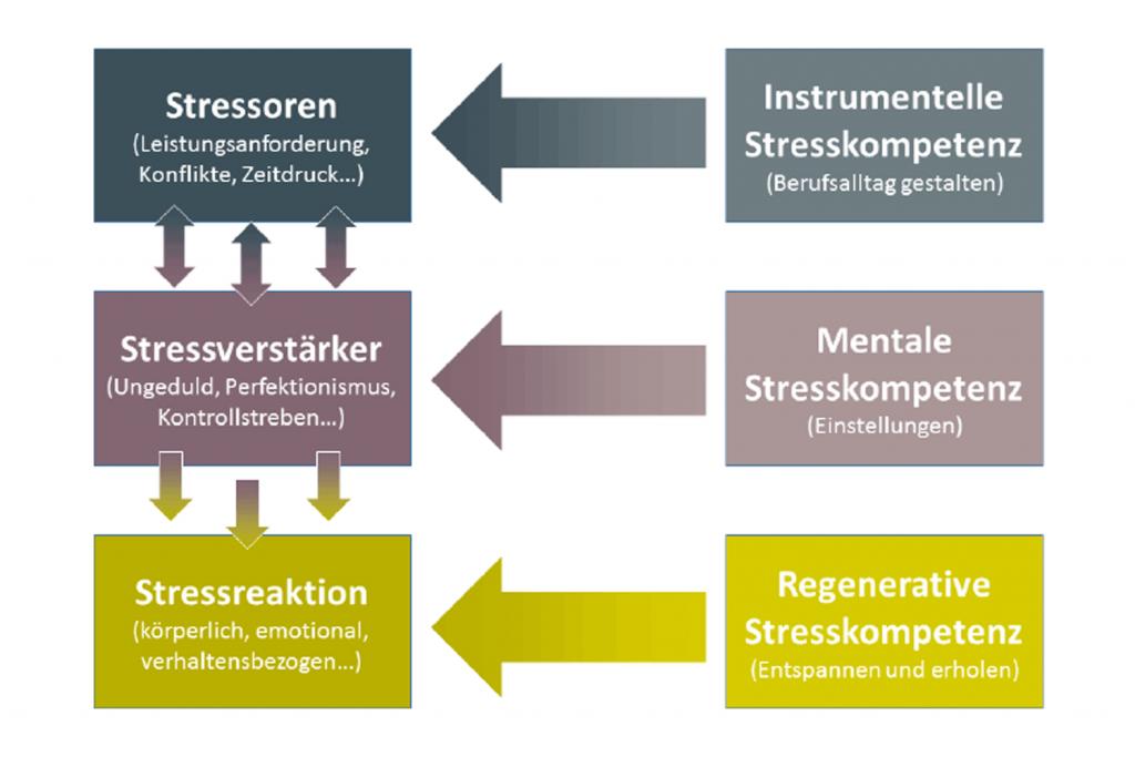 Zusammenhang von Stress